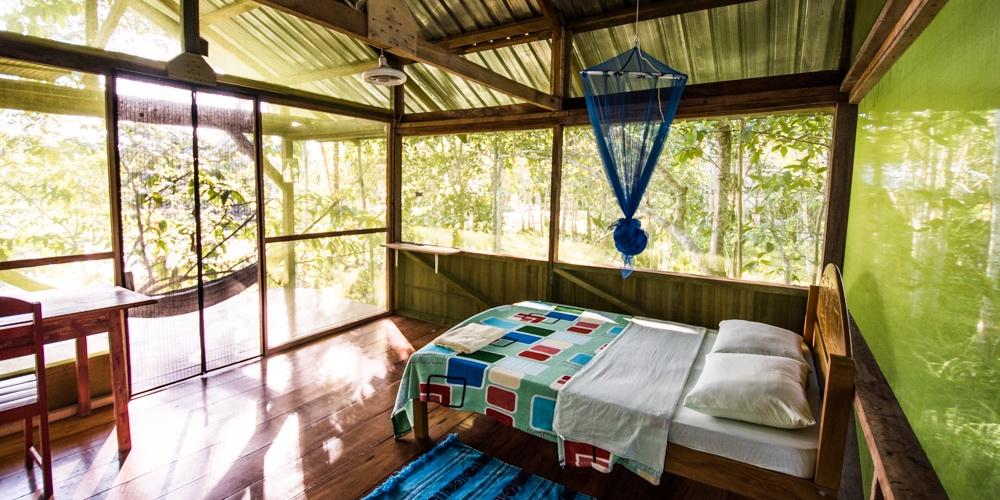Tree House Tambo at Caya Shobo Ayahuasca Healing Retreat Center, Iquitos, Peru